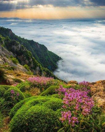 ایرانِ زیبای ما