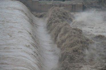 شکوه باران در دشتستان از دریچه دوربین عکاس اتحاد خبر