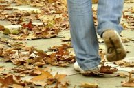 طنز؛ عاشق متولدین پاییز نشوید!