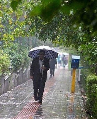 پیشبینی یک هفته بارانی برای استان بوشهر/ احتمال آبگرفتگی معابر