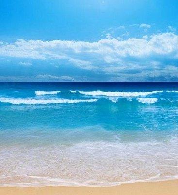 ساحل استان متلاطم میشود/ احتمال بروز پدیده گرد و خاک