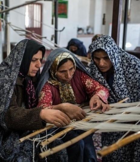 700 میلیارد ریال تسهیلات اشتغال دربوشهر پرداخت شد