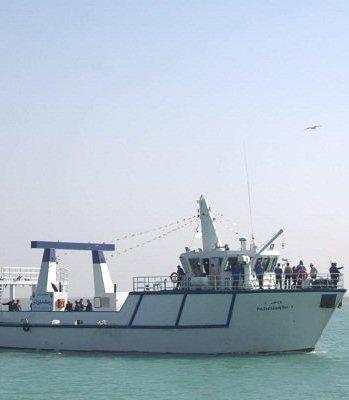 هیچگونه مجوز صیدی به چینیها در آبهای خلیجفارس واگذار نشده است