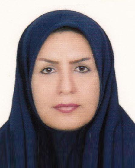 مدیرکل جدید فرهنگ و ارشاد اسلامی بوشهر؛ دانش آموخته علم نوین