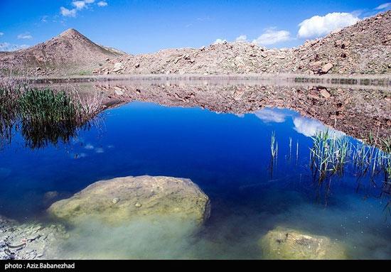 تصاویری بینظیر از شهر تالابهای ایران
