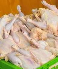 تکذیب کمبود مرغ گرم در استان بوشهر / قیمت مصوب 13500 تومان