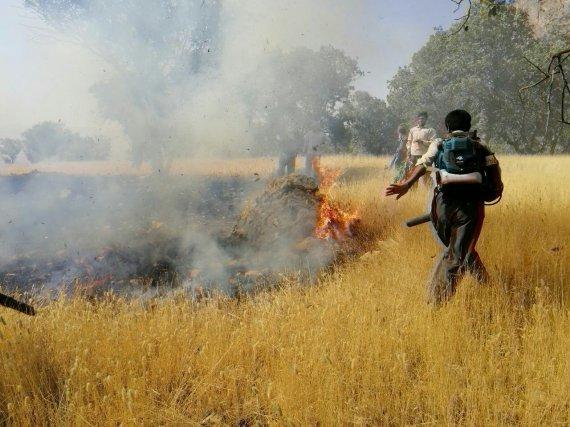 دستگیری عاملان آتش سوزی در کوه های بهمرد دشتستان