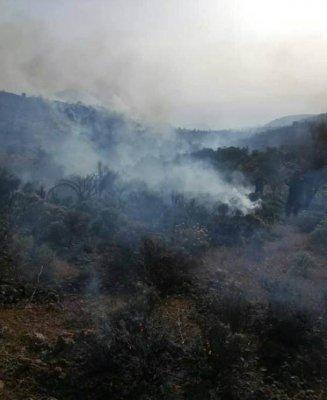 محدود شدن آتش در کوه های باغ تاج دشتستان / احتمال زیاد مهار آتش تا امروز