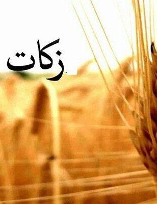 ۶۴۵ پایگاه جمعآوری زکات فطریه در استان بوشهر ایجاد شد