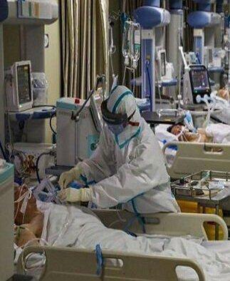 ظرفیت اسمی بخشهای کرونایی بیمارستانهای استان بوشهر تکمیل شد